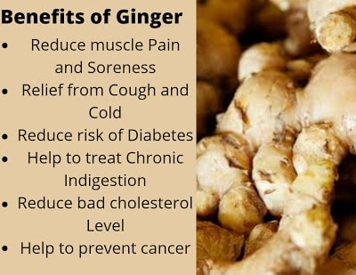 What are the Health Benefits of Ginger