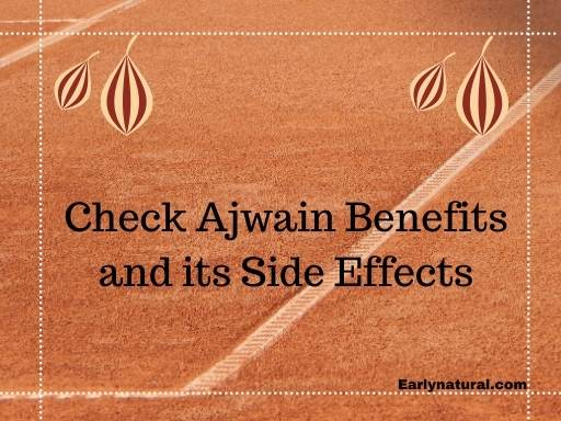 Check Ajwain Benefits, Side Effects and Ajwain Water