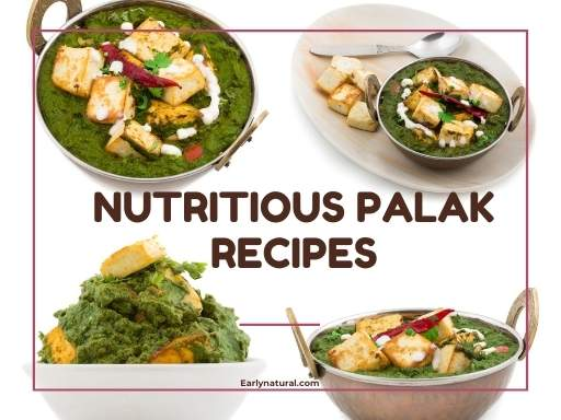 Easy Steps to Follow in Recipes of Nutritious Palak Recipes
