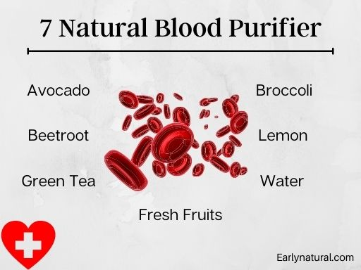 Clean Your Blood with Top 7 Natural Blood Purifier