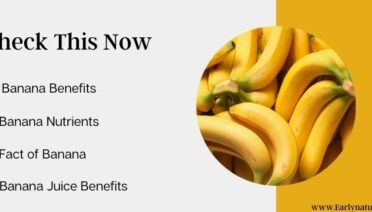 Check the Banana Benefits, Juice Benefits, and its Nutrients